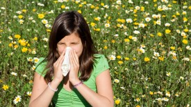 Hayfever injection